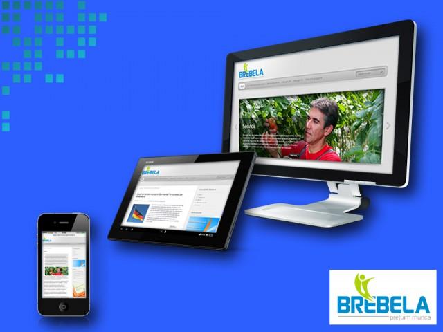 Brebela: site de prezentare firmă