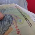Salariu - fluturas - plata
